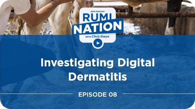 Investigating Digital Dermatitis with Karl Burgi